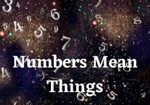 START HERE! – Numbers Mean Things – Course 1 – Level 1